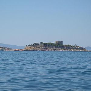 Голубиный остров
