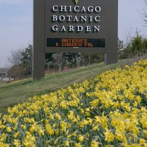 Чикагский ботанический сад