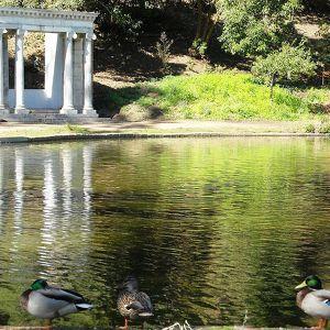 Городской парк «Золотые ворота»