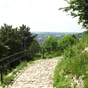 Lviv High Castle