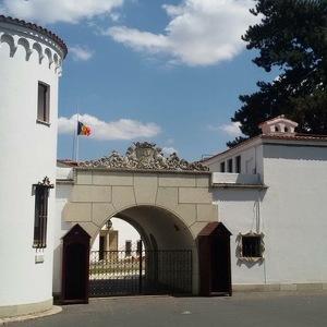 Elisabeta Palace