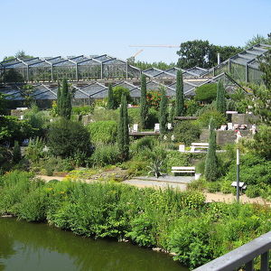 Старый ботанический сад Гамбурга