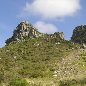 Cecilia, Table Mountain