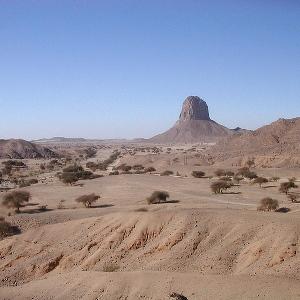 West Saharan montane xeric woodlands