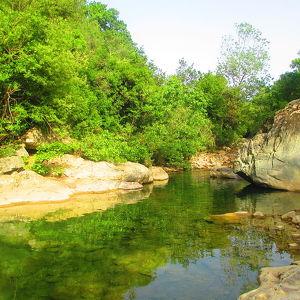 Taza National Park
