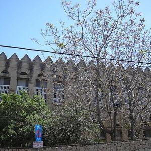 Hebrew Reali School