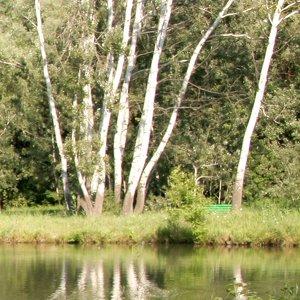 Chișinău Botanical Garden