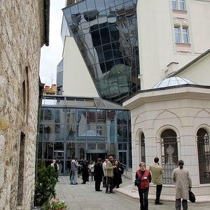 Bosniak Institute