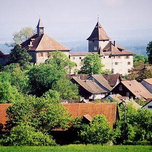 Замок Кибург