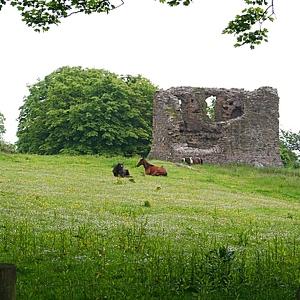 Carra Castle