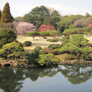 Императорский парк Синдзюку