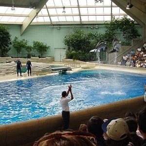 Dolphinarium in Minsk