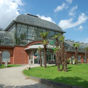 Сад Пальменгартен