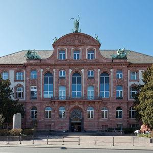 Музей естественной истории имени Зенкенберга